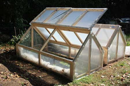 Mini-Greenhouse Cold Frame