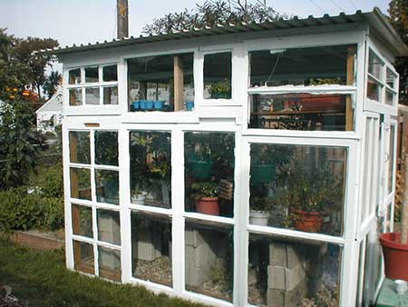Old Window Pane Greenhouse