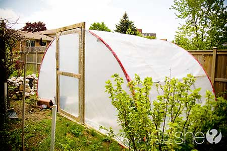 Trampoline Frame Greenhouse