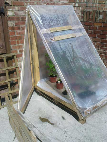 Triangular Pallet Greenhouse