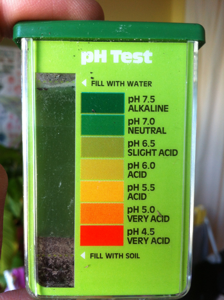Chemical soil test kit