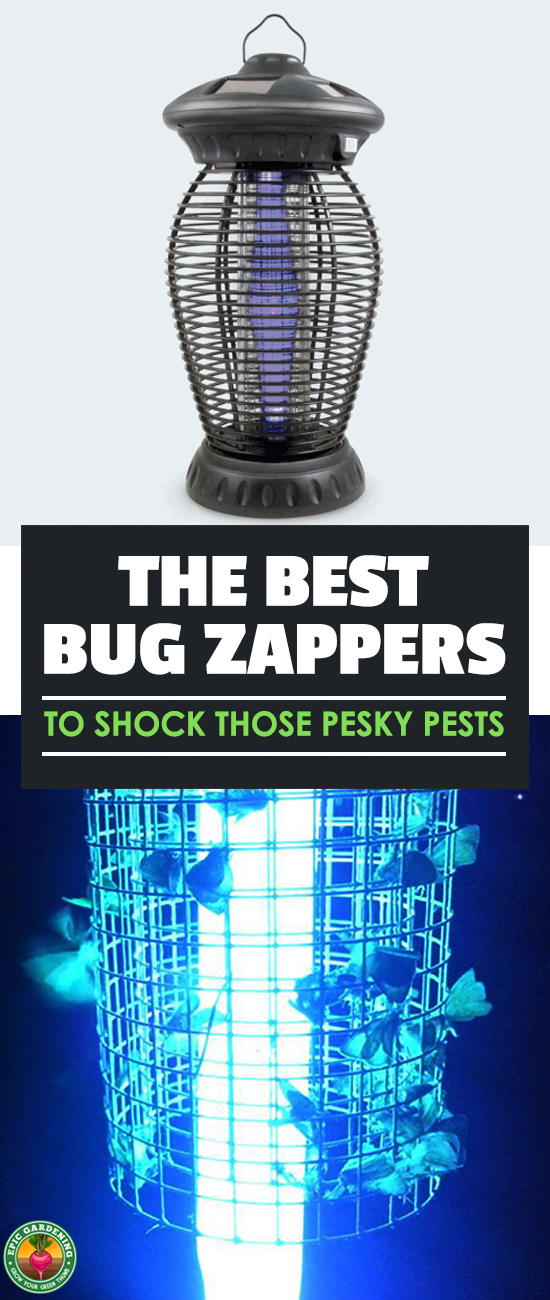 Best Bug Zapper of 2019: How They Work & Which To Get