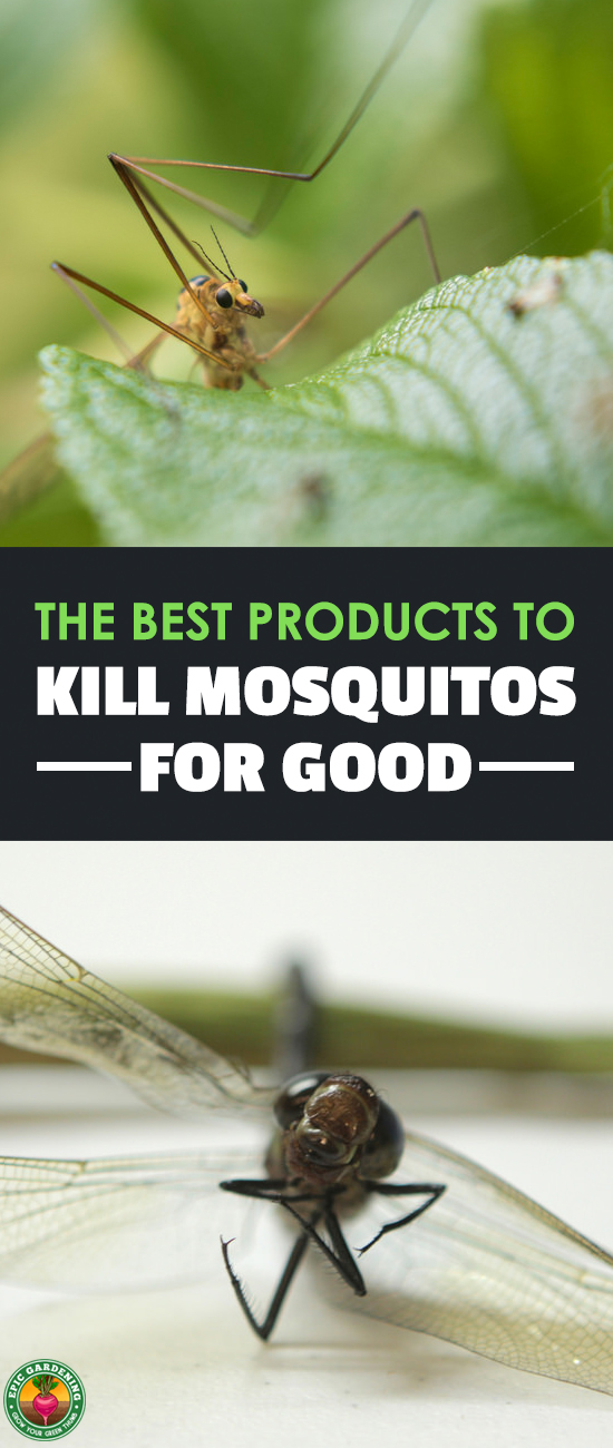Got mosquitos? You need the best mosquito killer for your living space! Learn all about mosquito killers and repellents, and discover which ones to buy!