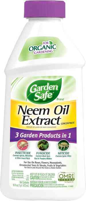 花园安全 Neem Oil Extract