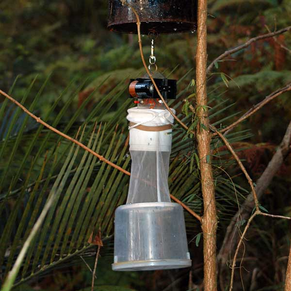 Carbon dioxide mosquito trap