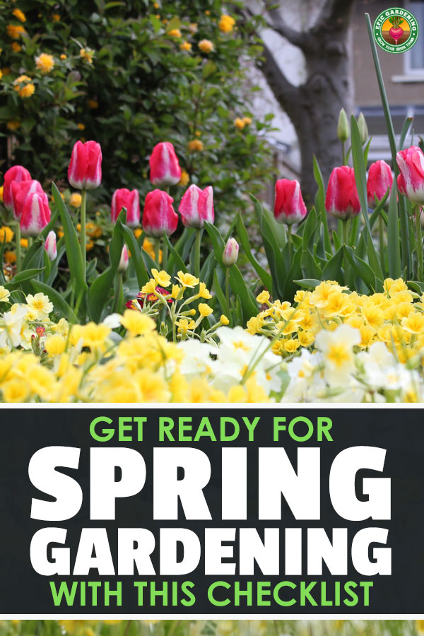 Spring garden maintenance is important for good growth. Find out everything you need to know to get your spring garden off to the best start with our checklist!