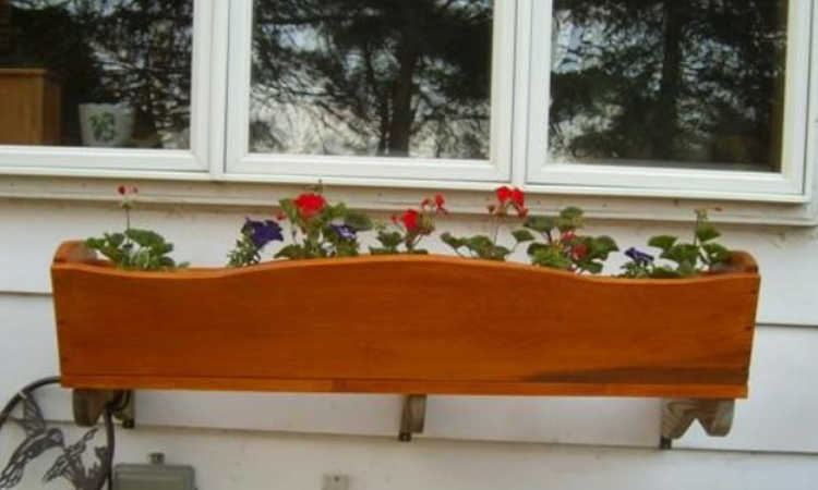 wall mounted window box