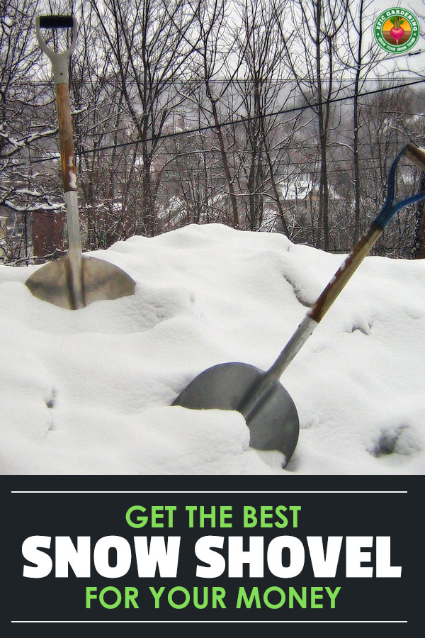 Shopping for a new snow shovel? Learn how to choose the perfect one for your snow-clearing needs with our buyer\'s guide!