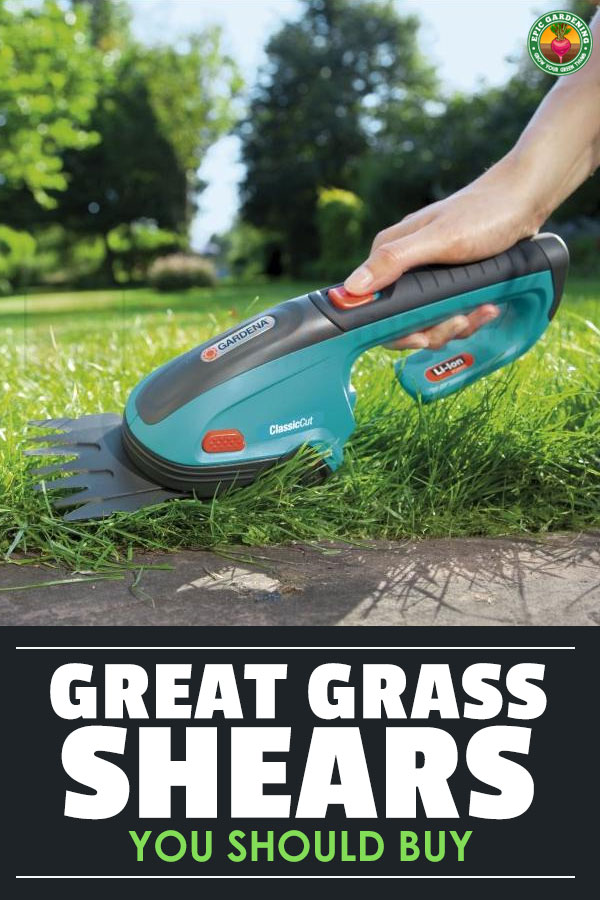 Unruly weeds or tall grass getting you down? Do you have places where your mower and string trimmer can\'t reach? You need the best grass shears you can find! I\'ll help you choose the right ones for you.