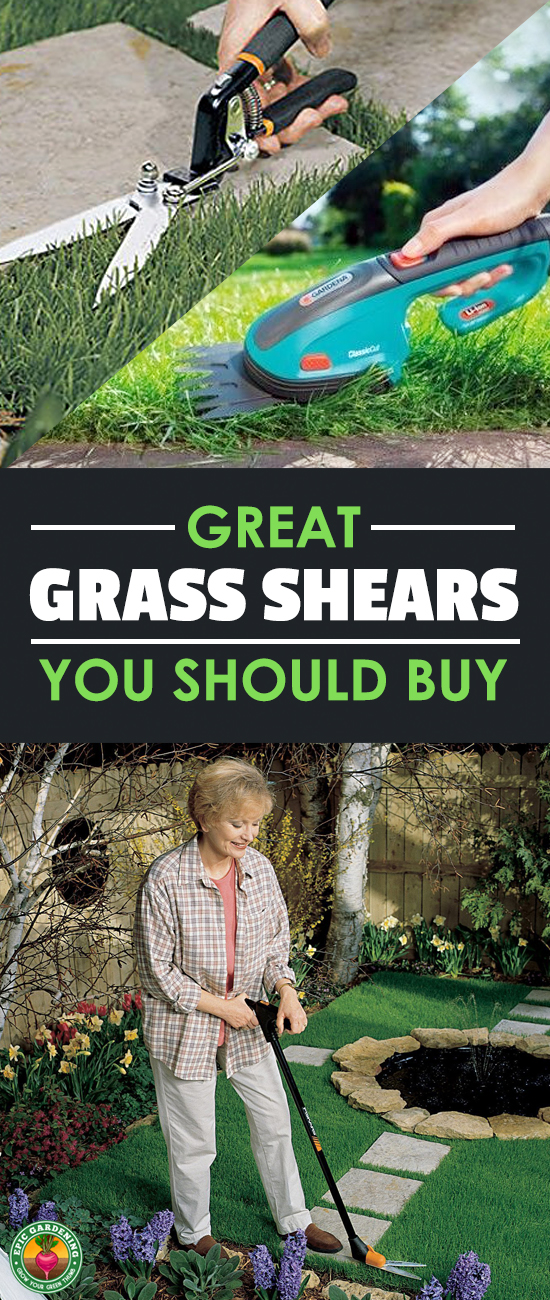 Unruly weeds or tall grass getting you down? Do you have places where your mower and string trimmer can't reach? You need the best grass shears you can find! I'll help you choose the right ones for you.