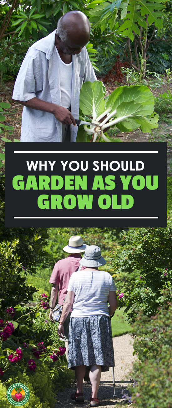 Don't give up your garden as you grow old! Elderly gardening is a great source of physical activity and mental stimulation. Read all about the amazing benefits here!