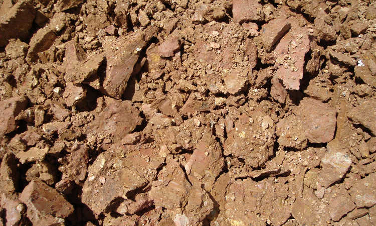 Shards of dried clay