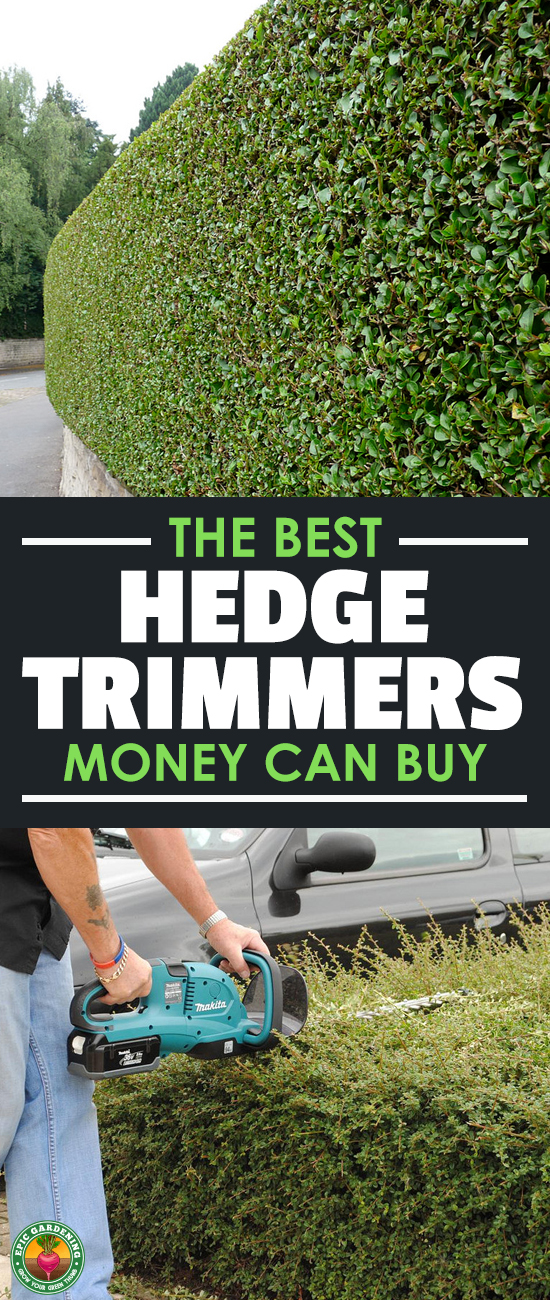 Need to get your landscaping in shape? Our buyer's guide will show you the best hedge trimmer for your job and price range.