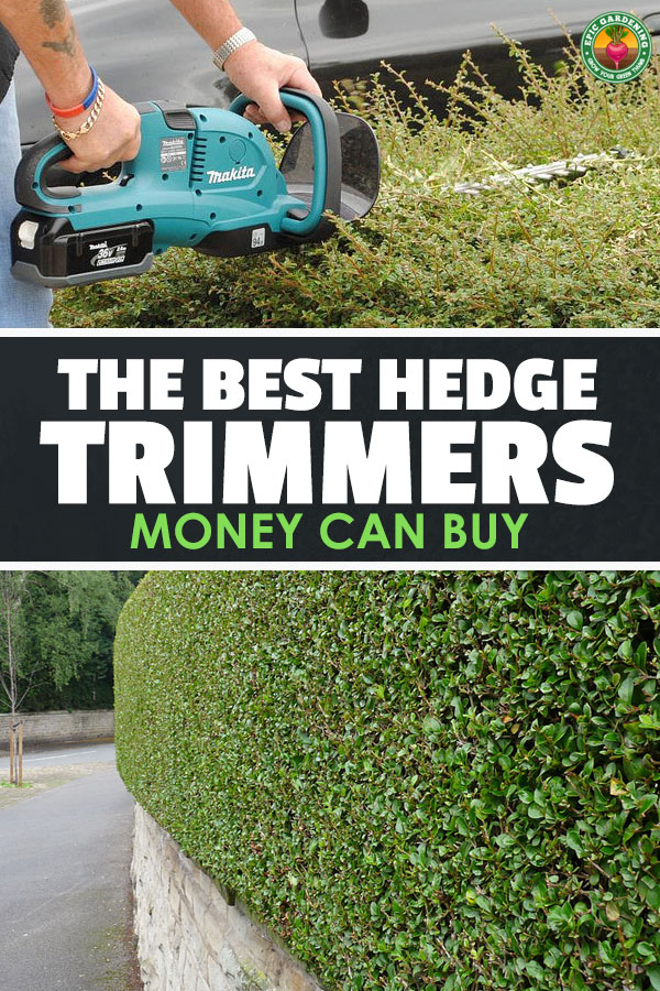 Need to get your landscaping in shape? Our buyer\'s guide will show you the best hedge trimmer for your job and price range.