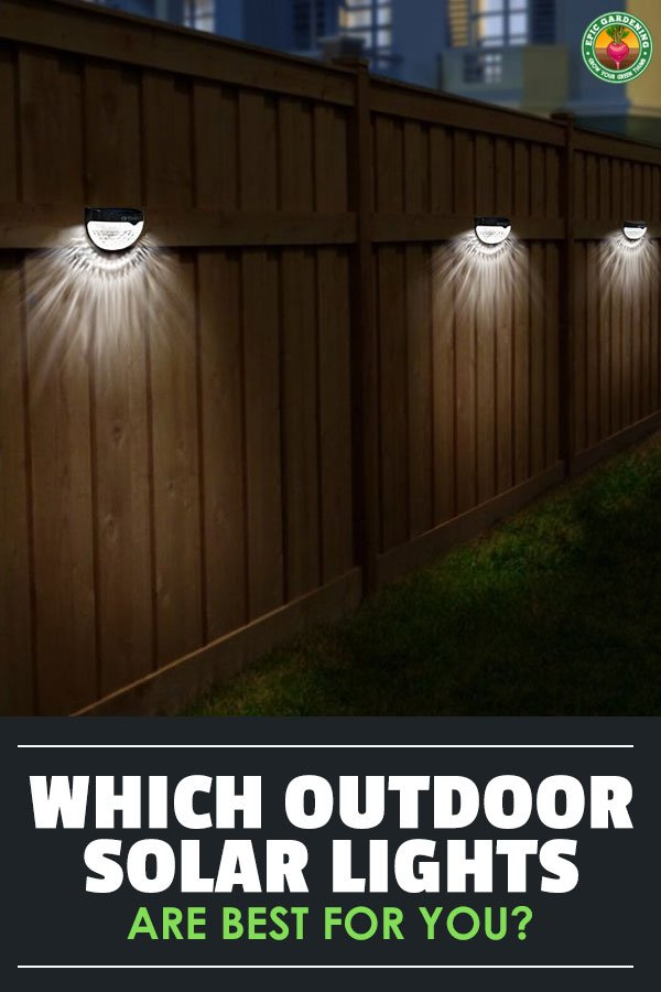 Finding the best outdoor solar lights for your yard can be a challenge. Our buyer\'s guide will help you find the most reliable lighting solutions!