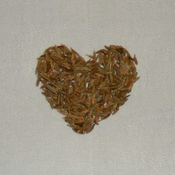 Seeds in heart shape