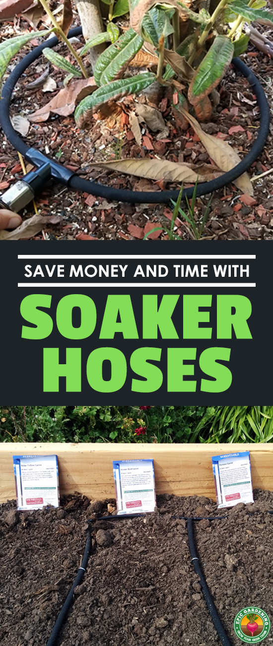 Figuring out how to use a soaker hose can be a herculean task. Our how-to guide will explain everything and make it easy and fun!