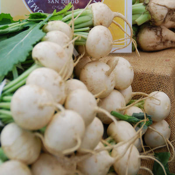 white beets