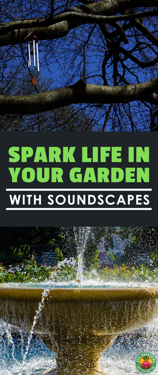 Incorporate elements of sound into your garden landscape to heighten your senses and enhance your relaxation! I'll show you how.