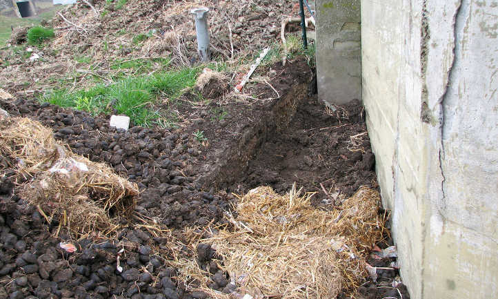 Horse manure fresh and composting
