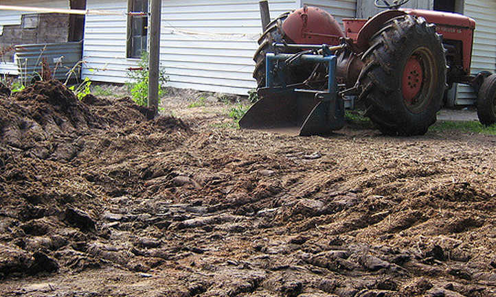 Moving horse manure with tractor