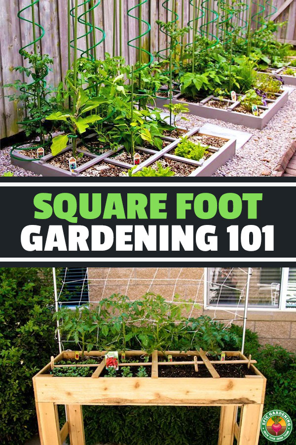 Square foot gardening is a a highly efficient food production machine that carries a whole host of awesome benefits for those pressed for space...and it's EASY to do!