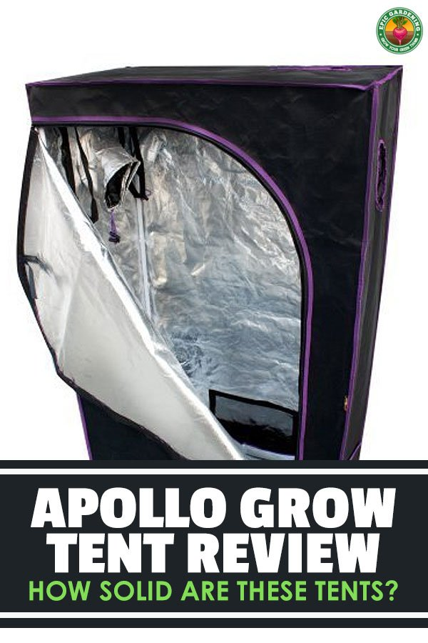 Choosing a grow tent can be overwhelming with all of the options out there. In this Apollo grow tent review I\'ll give you the low-down on this tend provider.