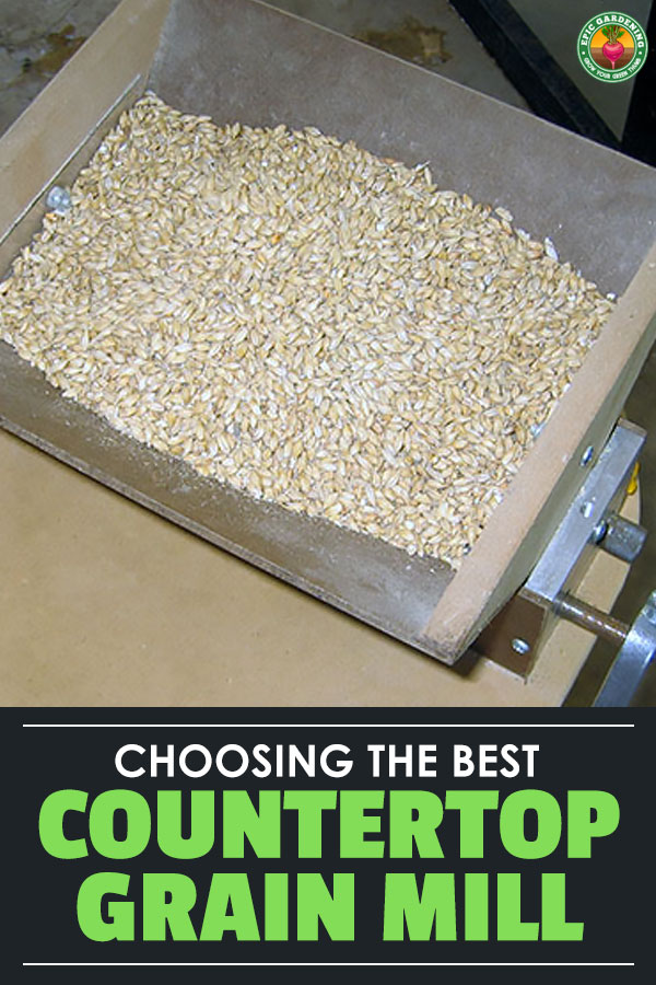 If you like the idea of being able to grind your own grains at home, then look no further than this buyer\'s guide for the best grain mills for home use.