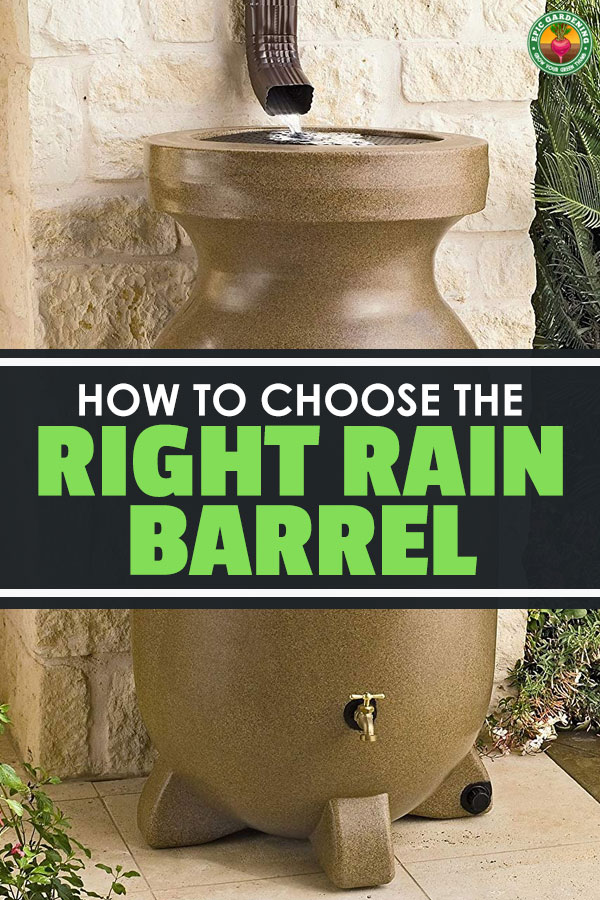 It\'s important to be resourceful as a gardener, and picking the best rain barrel is one way to do that. Inside, we look at the top rain barrels on the market.