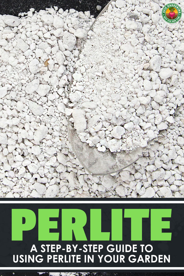 What are those little white specks in your potting mix? Perlite, that\'s what! Learn what perlite is and how to incorporate it into your gardening here.