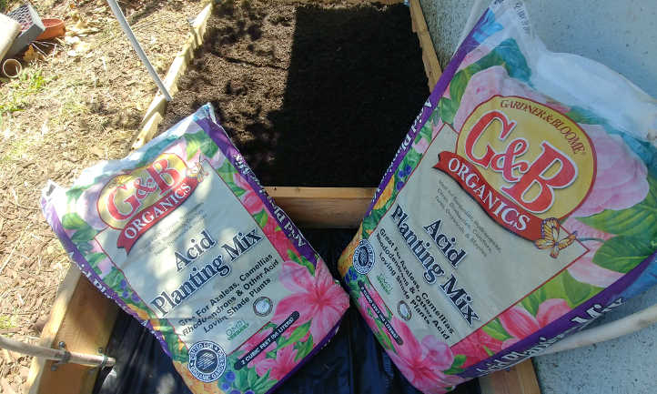 Quality soil for good growth