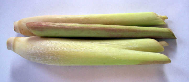 Prepared lemon grass