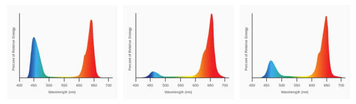 SolarSystem 1100 UVB de espectro completo