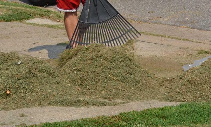 Raking up grass