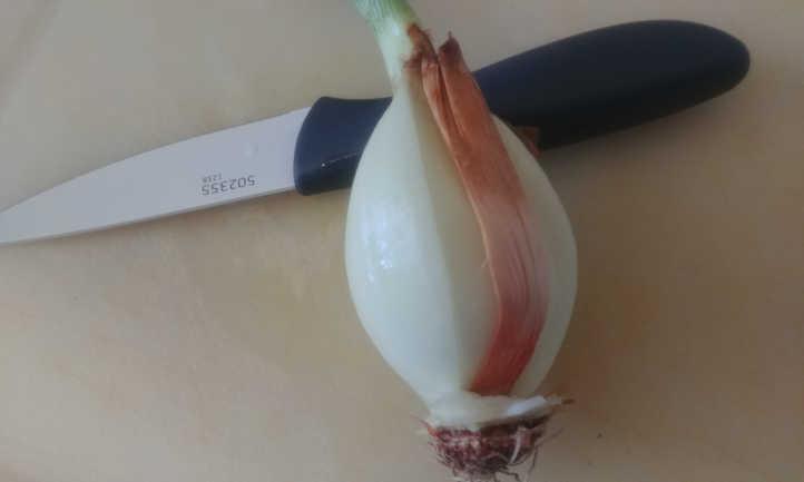 Found original stem