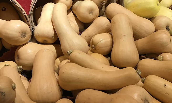 Growing Butternut Squash For Fall Flavor Epic Gardening
