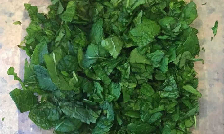 Mint prepared for freezing