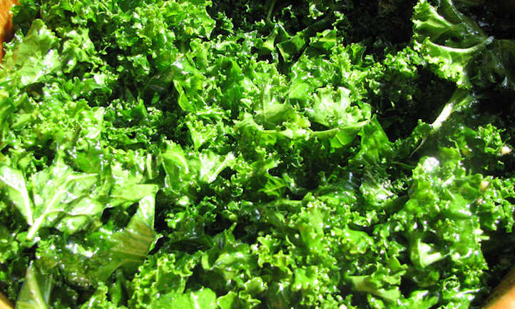 Kale companion plants