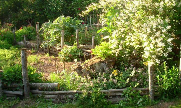 Homespun terraced garden